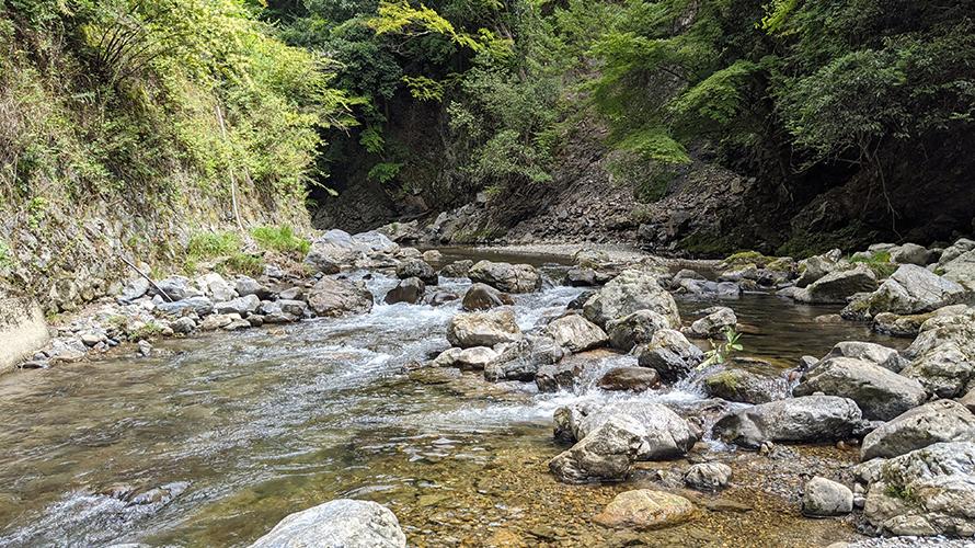 京都府京都市 清滝川 川遊び ( ディキャンプ )