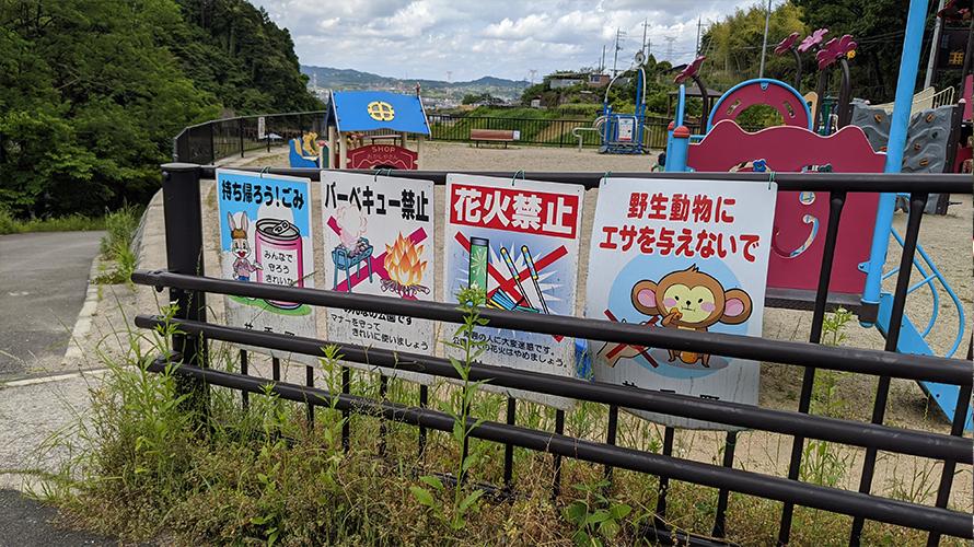 京都府綴喜郡井手町 玉川さくら公園 川遊び ( ディキャンプ )